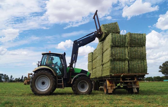 Good hay depends on good storage
