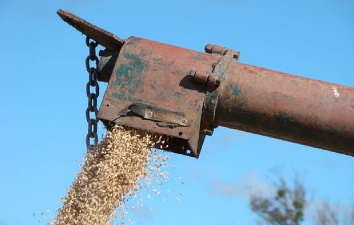 New app lifts lid on grain prices