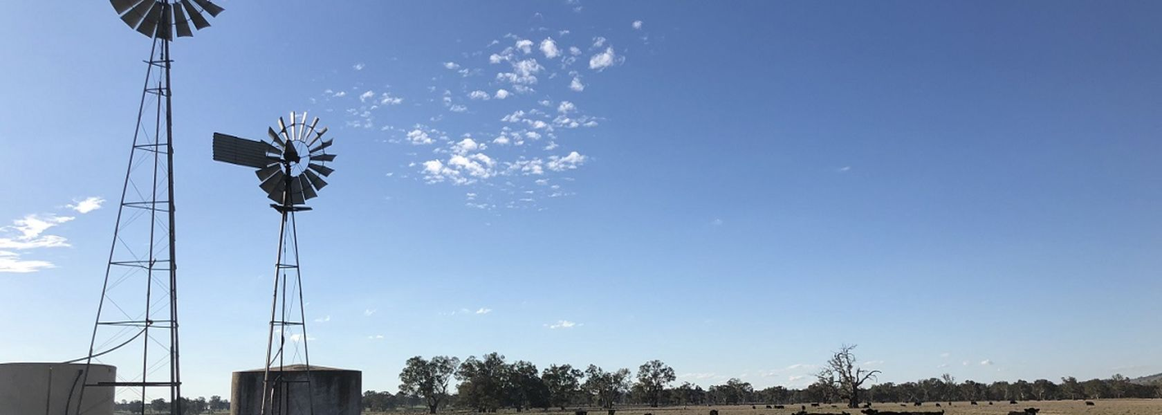 Australian farming sector holding up, despite drought