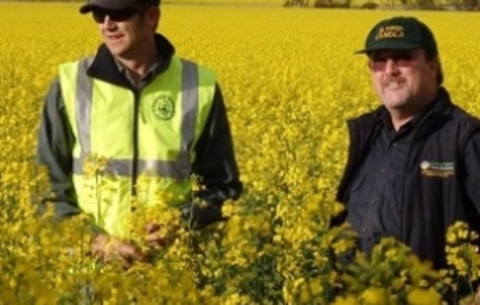 The value of canola technology