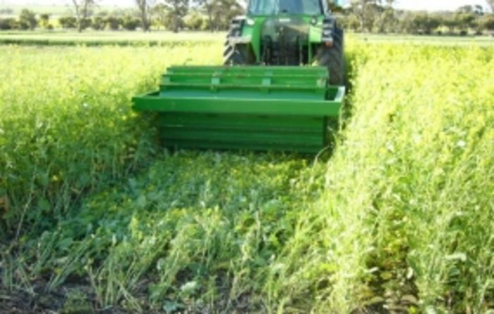 Harvest weed seed control tactics needed