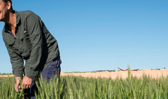 Grower's passion for sharing wins GRDC award