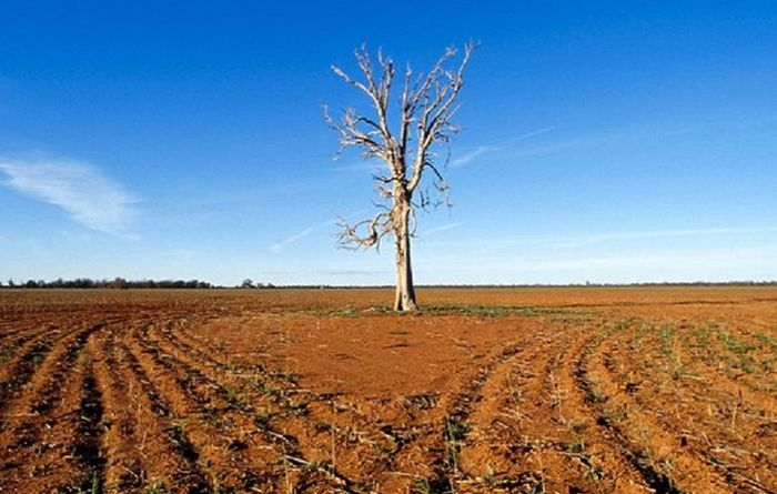 Qld drought conditions worsen