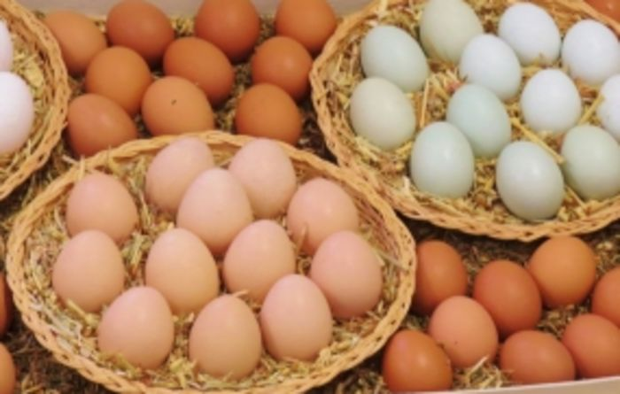 Free-range egg claims land two in hot water
