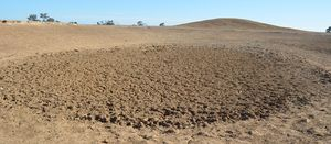 More drought funding announced