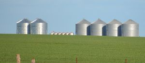 Think longer term for grain storage