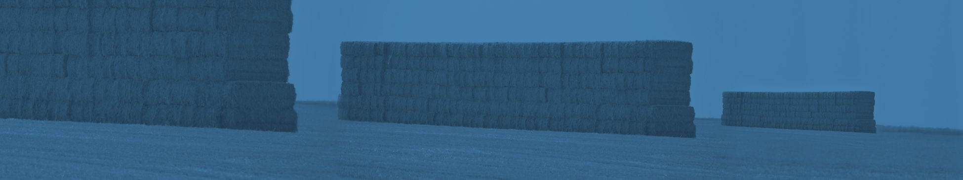 article_image