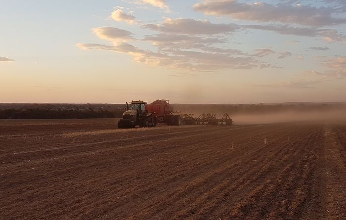 Paired row seeding proves a winner in WA