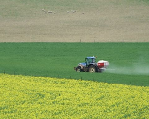 Value of farm production forecast to rise in 2018/19