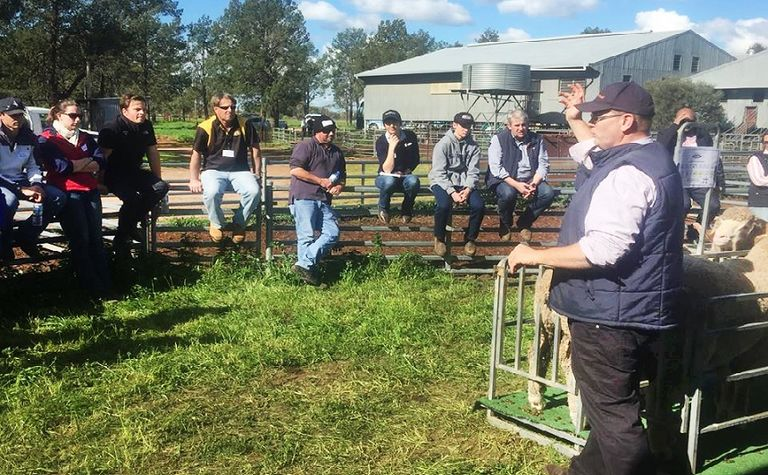 NSW tour inspires WA sheep producers
