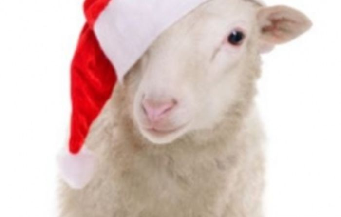 Christmas warning for farm visitors