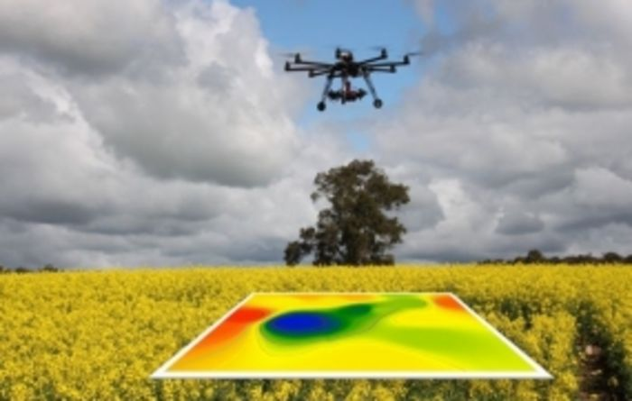 UAVs could help growers manage nutrients and insects