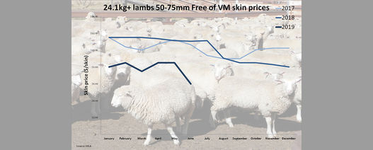 Sheep skin values down due to synthetics
