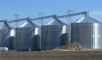 Top tips for fumigating grain