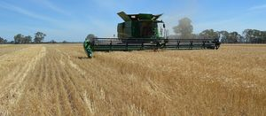 Funding boost for grain