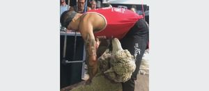 Shearing record set in Western Australia
