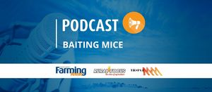 Podcast: Baiting mice