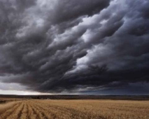 Rain and lower AUD a positive for commodity prices
