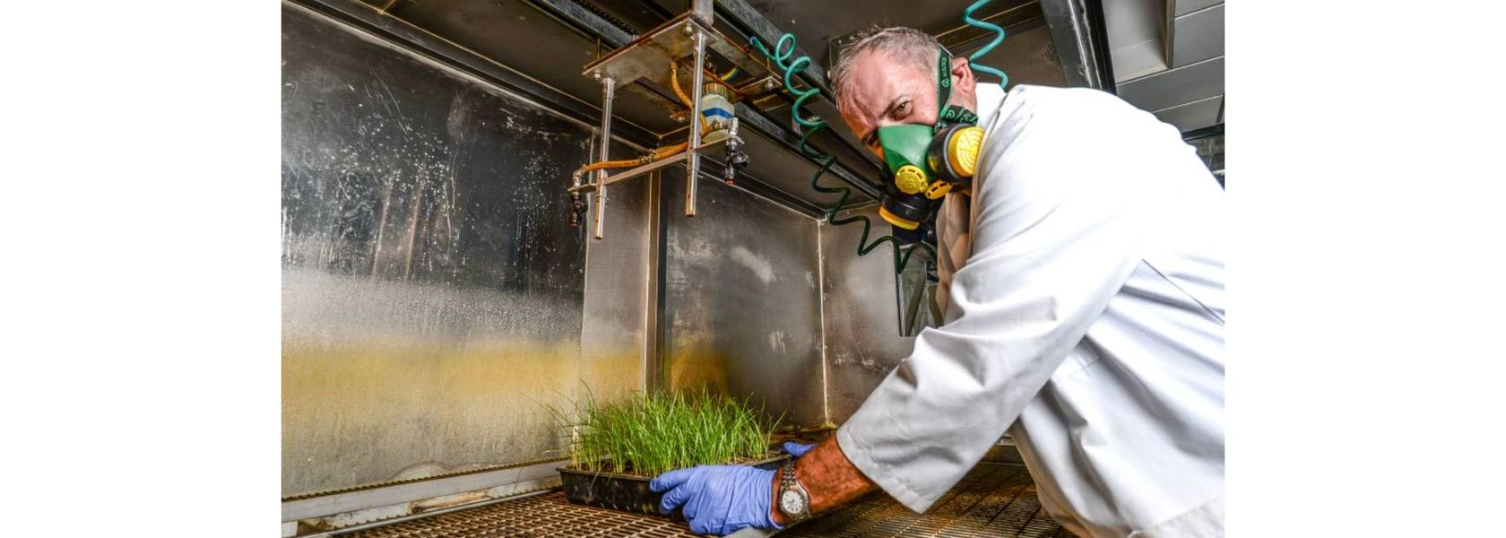 Call for non-chemical weed management