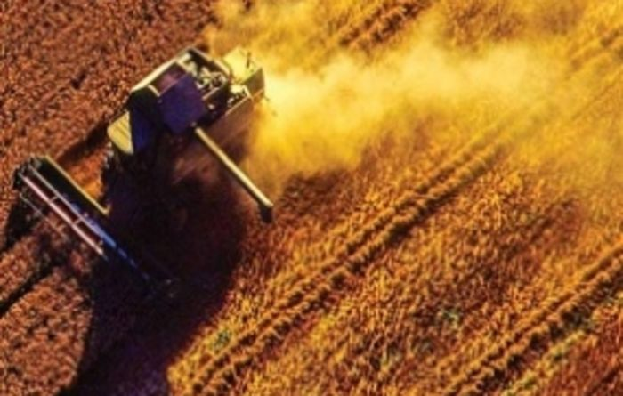 Satellite technology gives farmers the edge