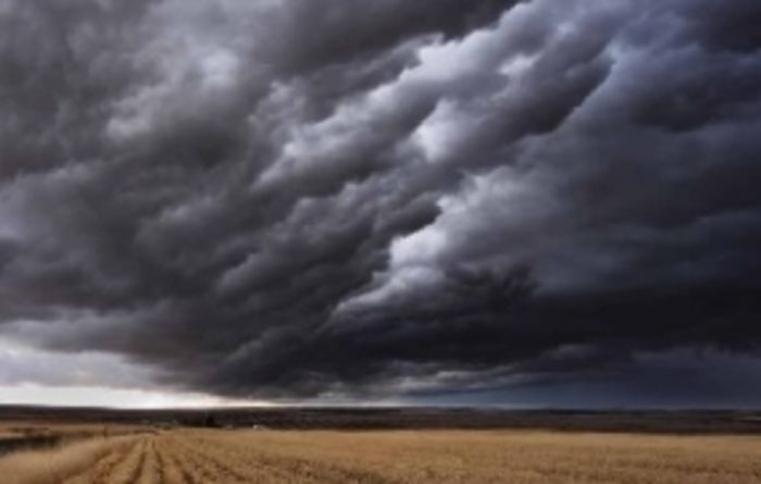 Drier outlook forecast for WA
