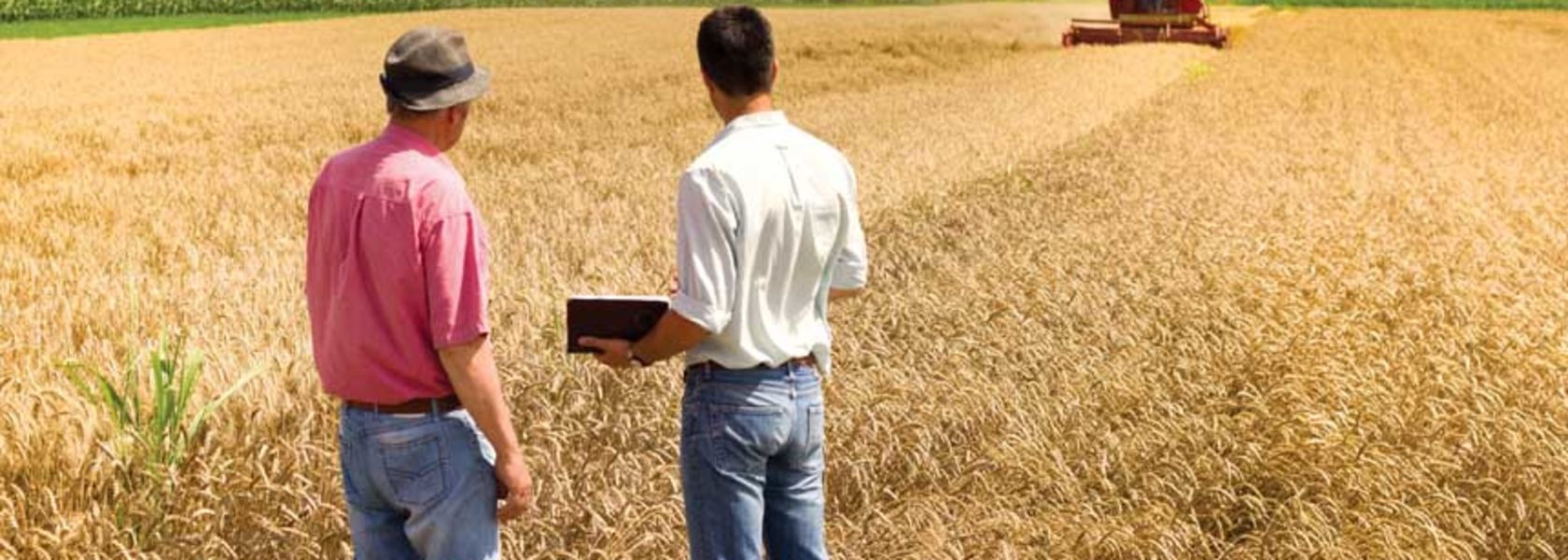 Good season has farmers looking to expand